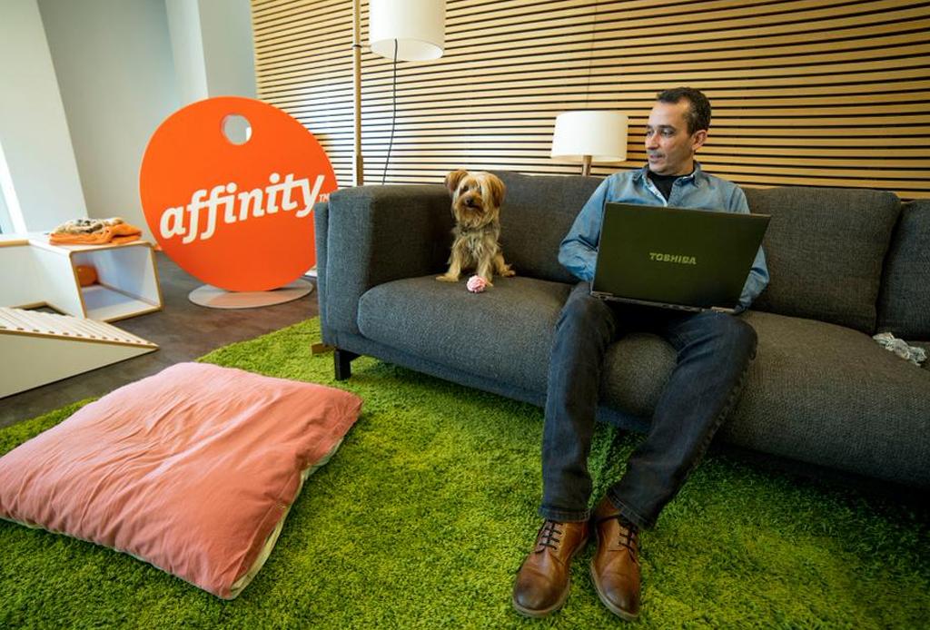 #PetDay: Ve con tu mascota al trabajo