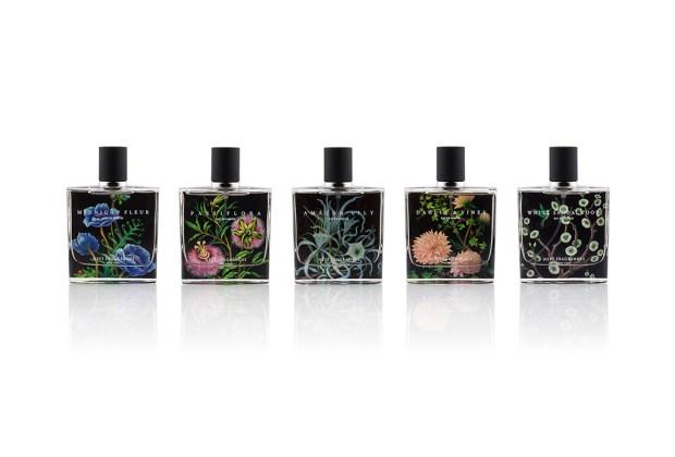 Layering: La nueva tendencia para aplicar tu perfume - sephora_lineup_edp_onwhite_72dpi-1024x694