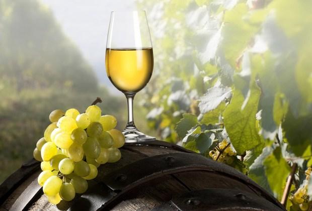 Prepara un refrescante smoothie de vino blanco - vino-blanco-1024x694