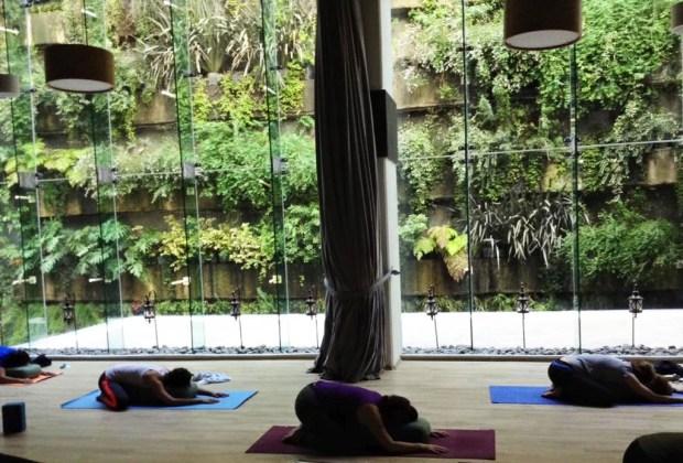 Los 6 estudios de yoga más exclusivos de la CDMX - yoga1-1024x694