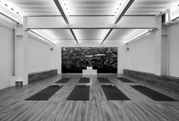 Los 6 estudios de yoga más exclusivos de la CDMX - yoga4-1024x694