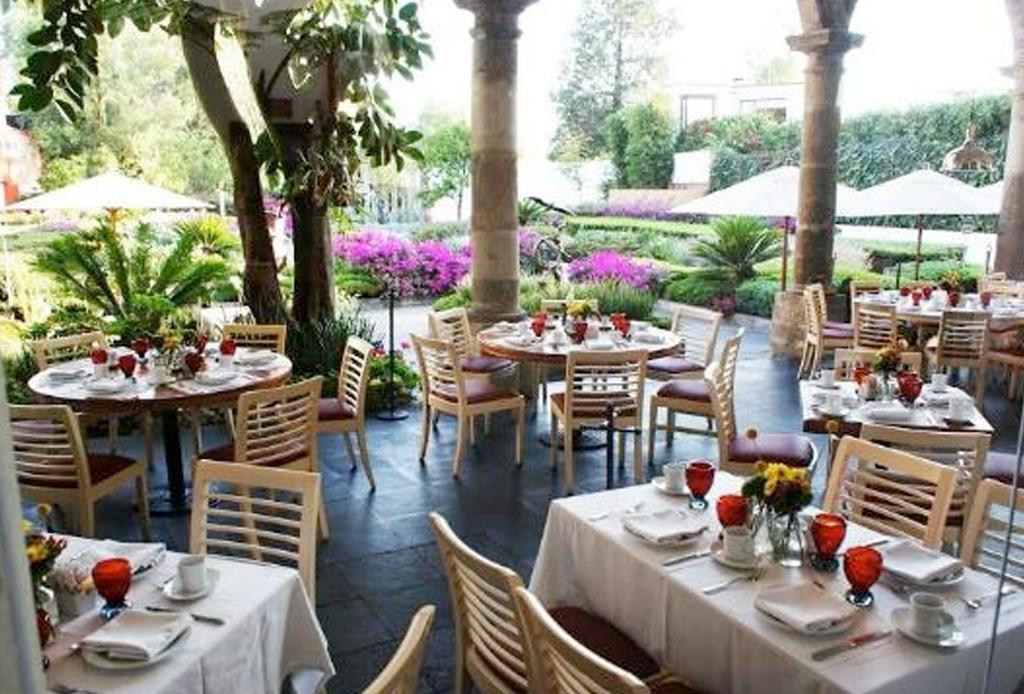 12 restaurantes en San Ángel que te sorprenderán - bistro-83