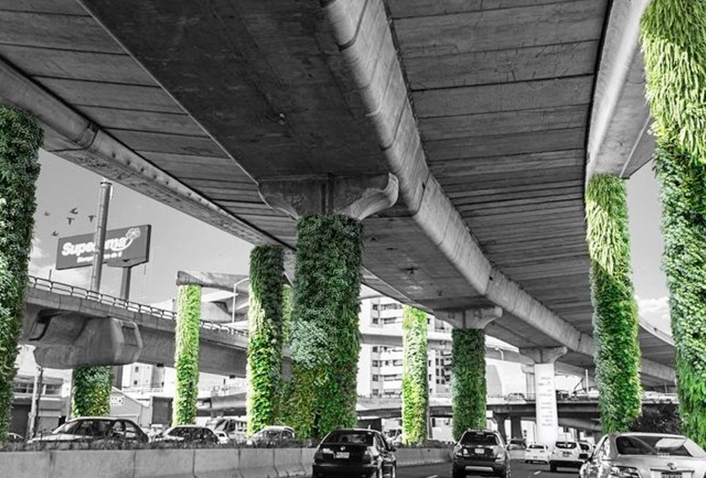 12 iniciativas ecológicas en la CDMX para tener en la mira - ecologia-cdmx-2
