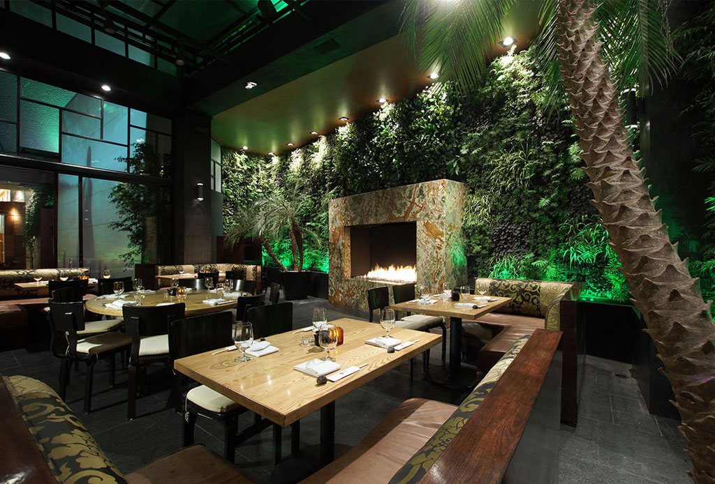 Los 5 mejores restaurantes de comida china en la CDMX - hunan