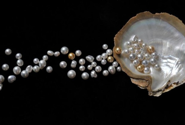 La guía que necesitas para comprar perlas auténticas - perlas1-1024x694