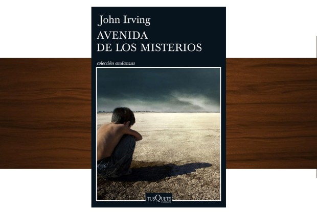10 libros buenísimos para leer esta temporada - avenida-de-los-misteriores-john-irving-1024x694