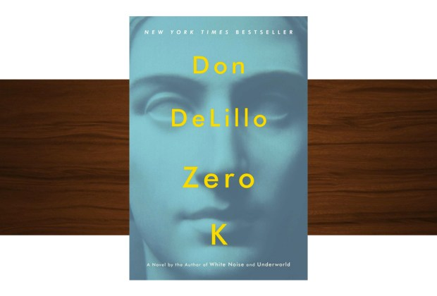 10 libros buenísimos para leer esta temporada - don-lelillo-zero-k-1024x694