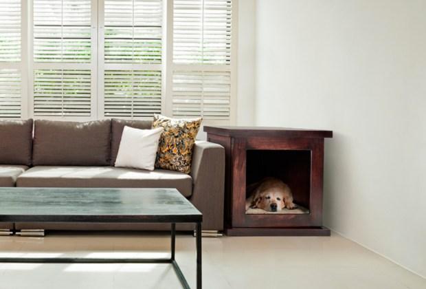 Tenemos la solución para que tu perro no se asuste por los fuegos artificiales - zencrate-sala-1024x694