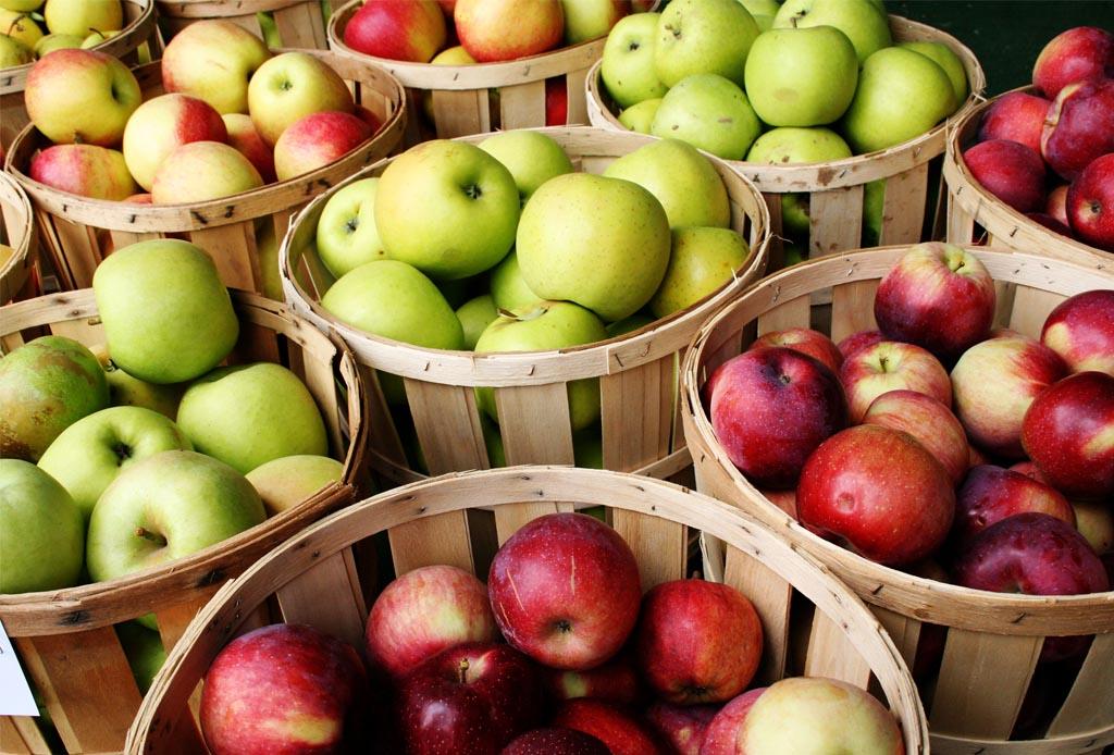 Si te gusta compartir comida con tu perrito, estas 10 frutas son ideales para hacerlo - cafeina-manzanas-1024x694