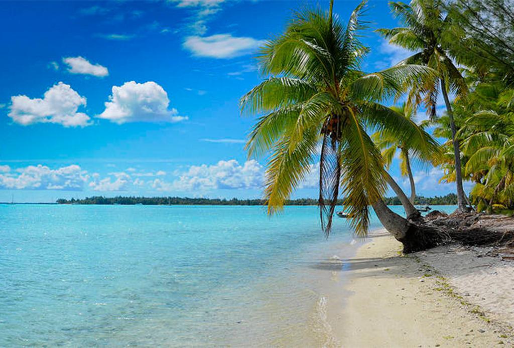 Las mejores playas vírgenes de México - playa-paraiso