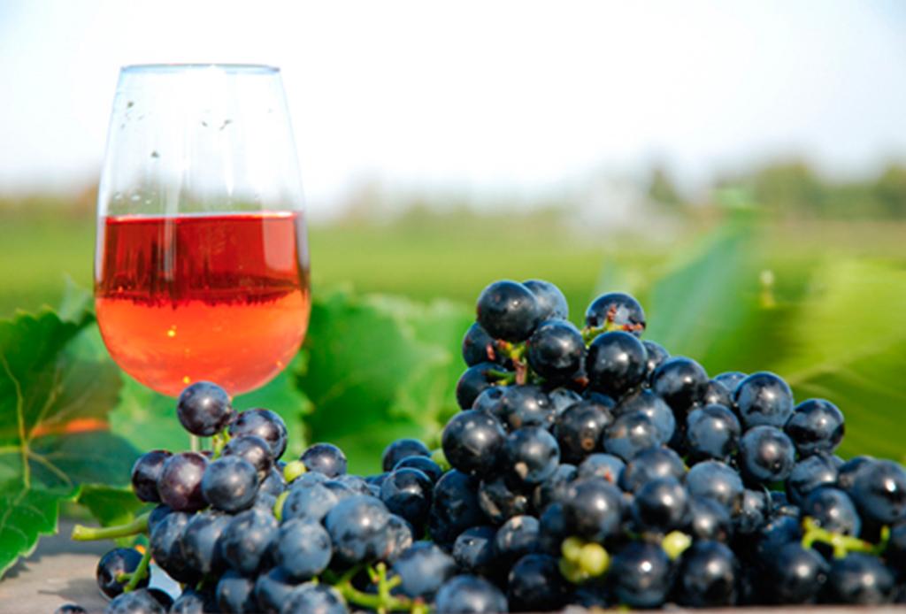 ¡Descubre la ruta del vino canadiense! - c-quebec
