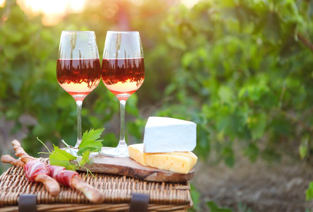 ¡Descubre la ruta del vino canadiense!