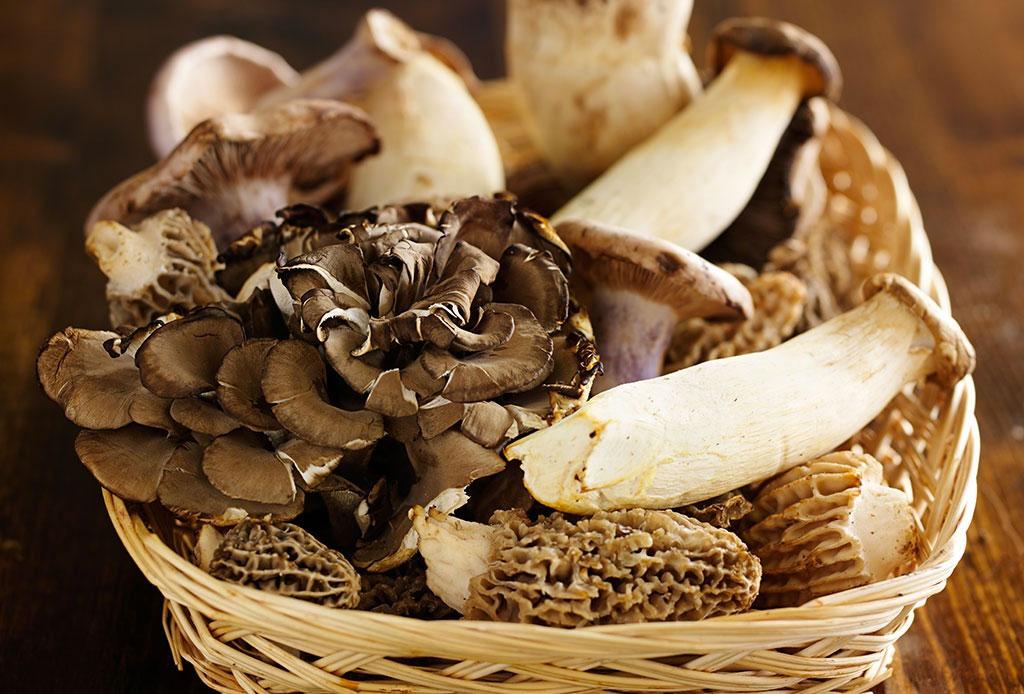 El mushroom coffee le dice adiós al café común - mshroom-coffee