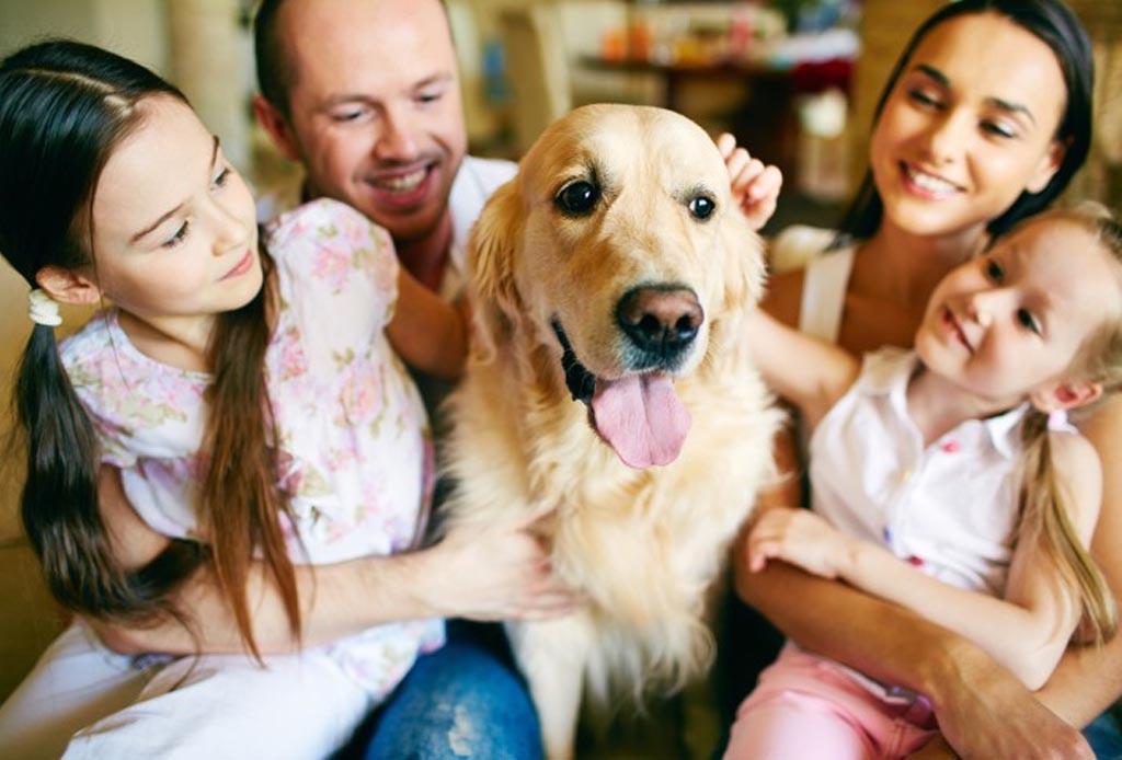 Resultado de imagen para imagen de un perro con la familia