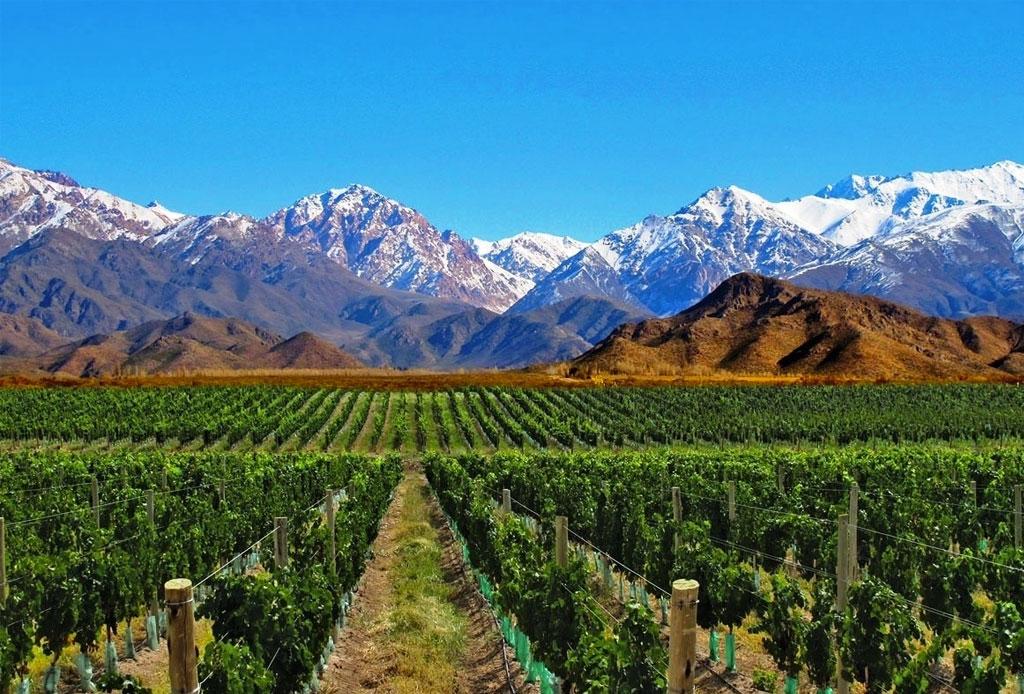 Las ruta del vino en Argentina para verdaderos conocedores - argentina-mendoza