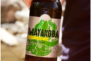 ¡Mayakoba ya tiene su propia cerveza artesanal!