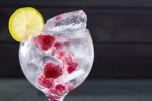 Nuestras marcas favoritas de Dry Gin para un Gin & Tonic perfecto