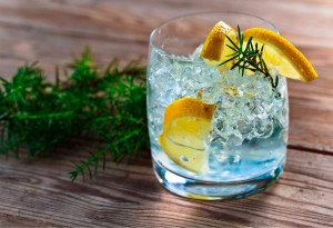¿Quieres saber todo sobre el gin? Conoce estos 10 datos para ser un experto