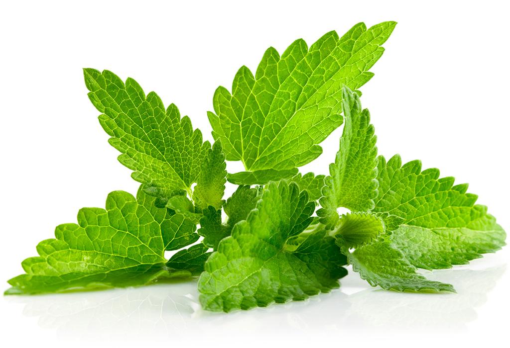 Descubre los diferentes significados de la aromaterapia - mrnta