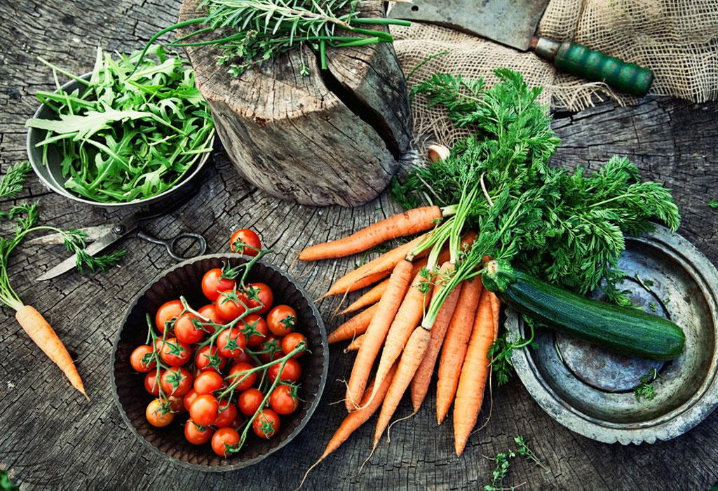 DIY: Crea tu propio huerto orgánico