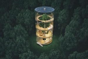 La casa del árbol de cristal que vas a querer tener
