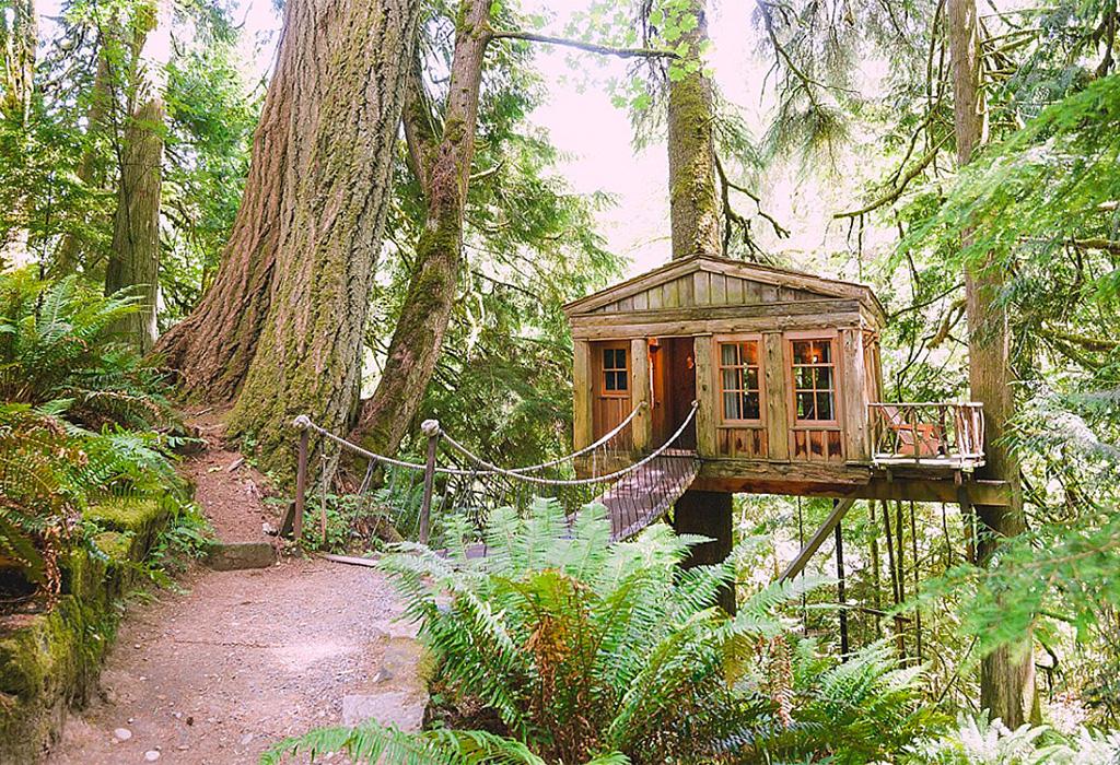 Las mejores casas de árbol alrededor del mundo que podrás rentar - untitled-1-2