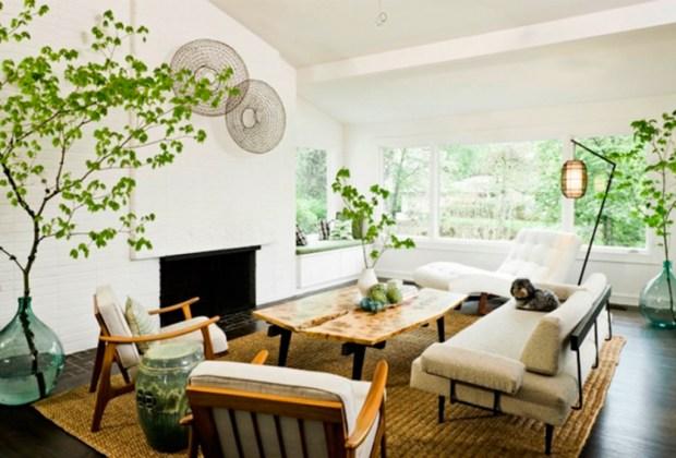 Decorar tu casa con plantas tiene más beneficios de los que te imaginas - adorno