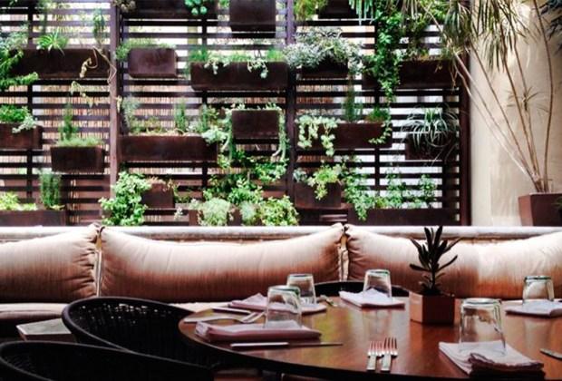 Restaurantes IMPERDIBLES en San Miguel de Allende para disfrutar de una noche de drinks - restaurant-1024x694