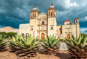 ¿Qué hace que el mezcal de Oaxaca sea el más exportado de México?