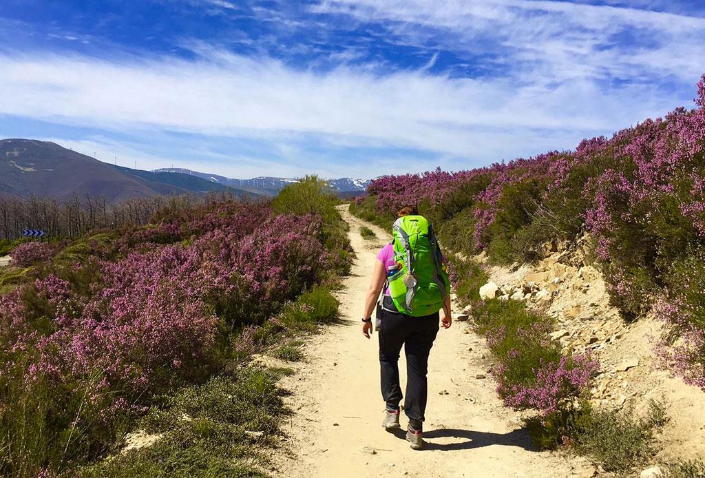 5 razones por las que tienes que hacer el camino de Santiago de Compostela