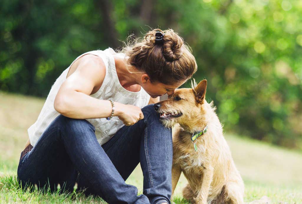 Toma en cuenta TODOS estos puntos antes de adoptar una mascota - adoptar_mascota_1