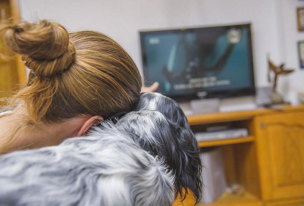 Los gatos y los perros son la mejor compañía para ver series, según Netflix - netflix-gatos-perros-mejor-compania-2