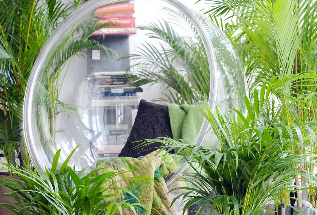 La planta ideal para cada tipo de habitación - plantas_cuarto_4