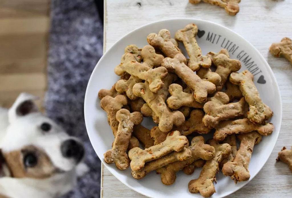 Los alimentos y bebidas que todo perro foodie debería probar - alimentos-y-bebidas-perro-foodie-2