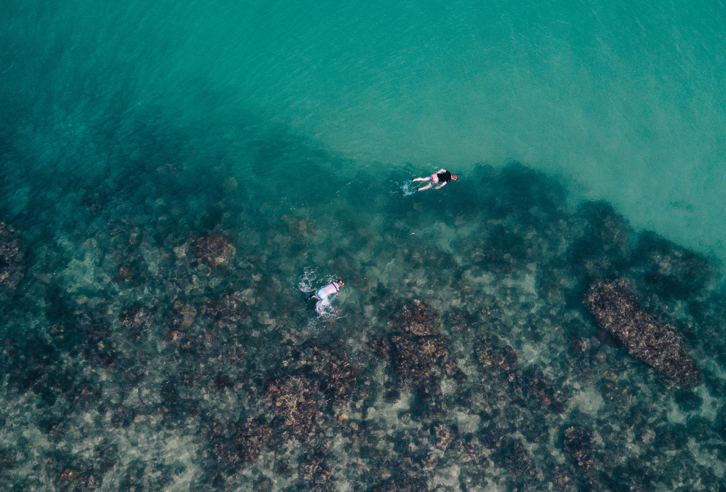 Hawái prohibe protector solar que daña los arrecifes de coral
