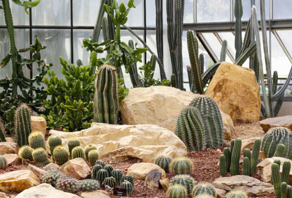 Jardines secos la tendencia de jardiner a con plantas for Jardineria exterior con guijarros