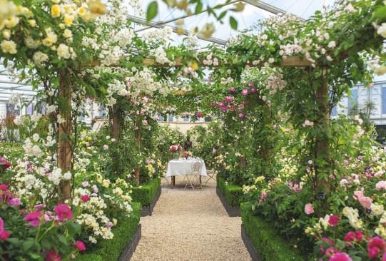 ¡Visita estos festivales de flores alrededor del mundo que te encantarán! - festivales-de-flores-en-el-mundo-2-300x203