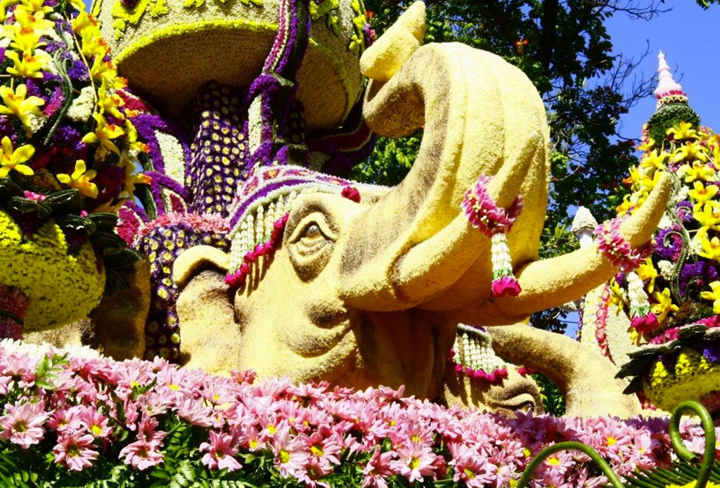 ¡Visita estos festivales de flores alrededor del mundo que te encantarán!