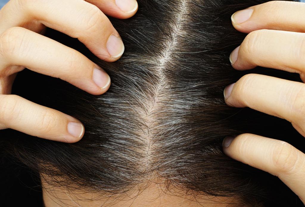 Deshazte de tus canas con estos productos sin tener que pintarte el pelo
