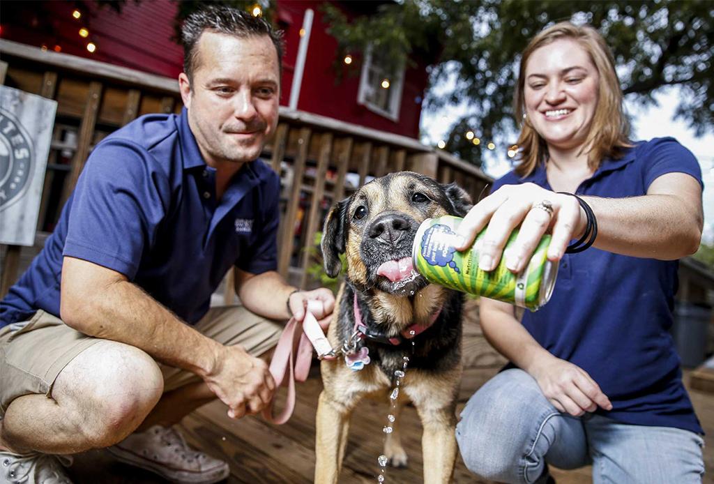 ¿Cerveza para perros? ¡Existe y ya puedes pedirla para tu mascota! - cerveza-perrito-1