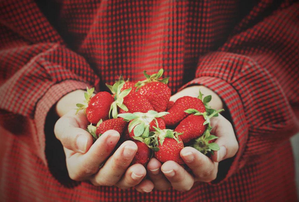 Happenings: todo lo que puedes hacer este fin de semana en la CDMX (14-16 diciembre) - fresas