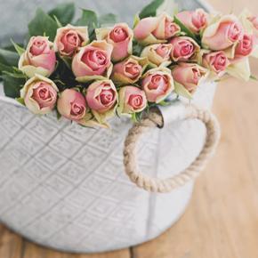 QUIZ: Qué perfume regalarle a tu mamá de acuerdo a su personalidad - rosas