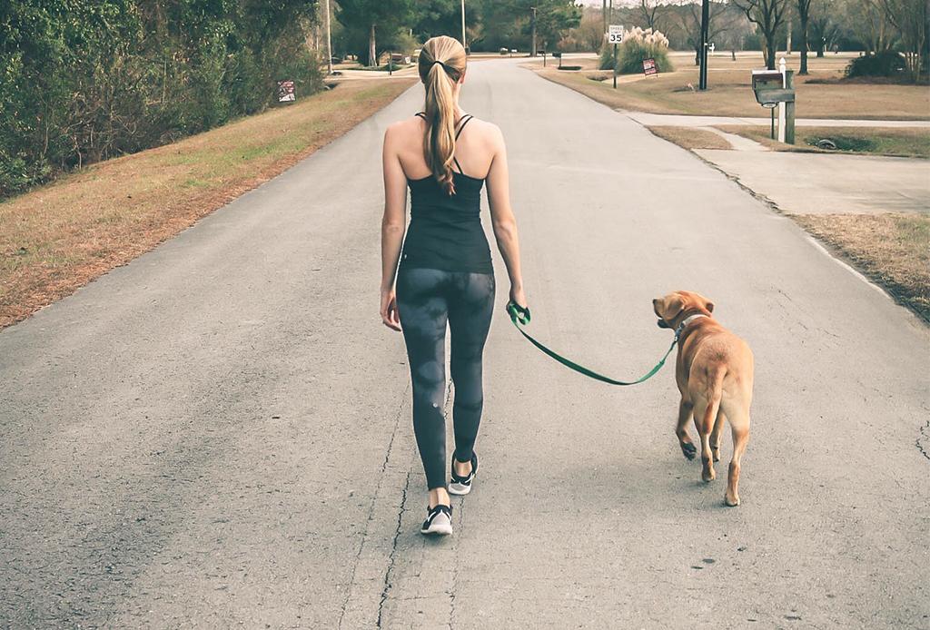 7 pasos para educar a tu perro a que camine/corra a tu lado - caminar-con-perro-5