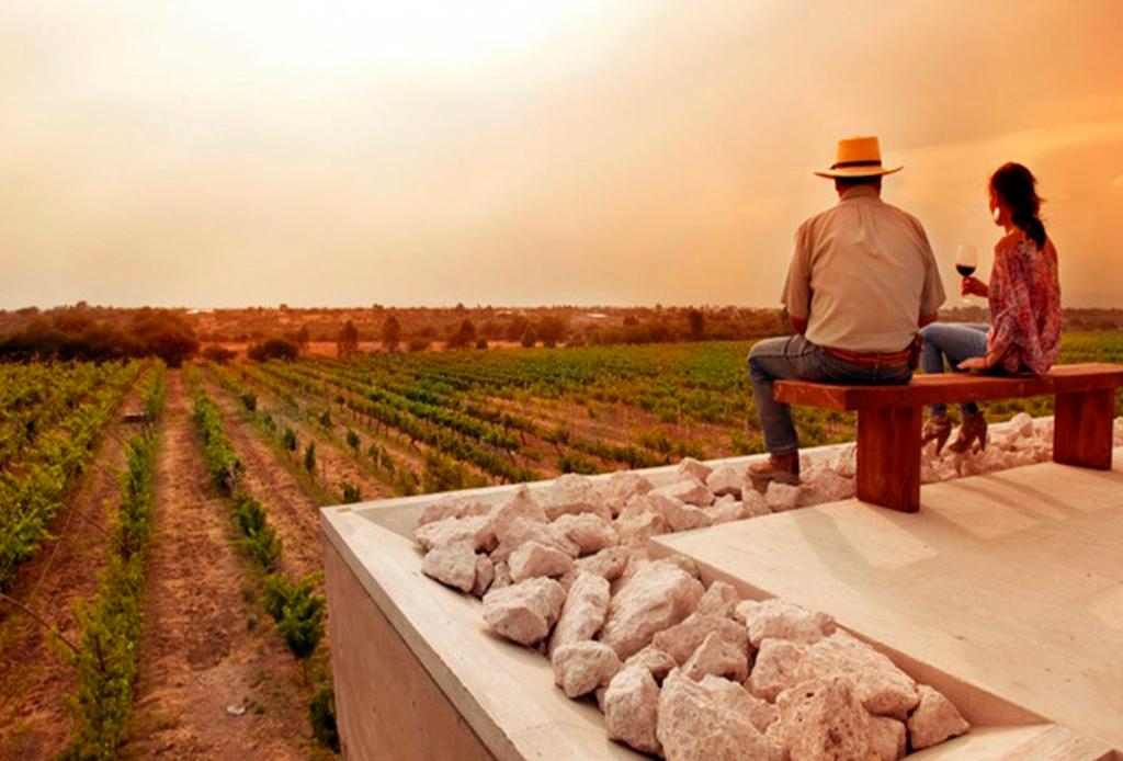 Los viñedos mexicanos que deberías visitar en tus próximos viajes - vincc83edos-para-visitar-3