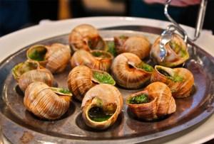 Goût de France - escargots