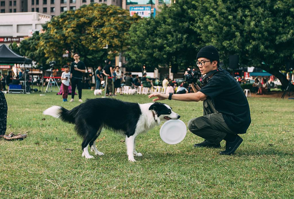 Los mejores ejercicios mentales para tu perro - perritos-mentales-4-1024x694
