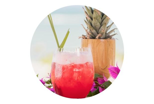 Tomar este drink en Rosewood Mayakoba ayudará a preservar las tortugas marinas - mezcalita-akumal