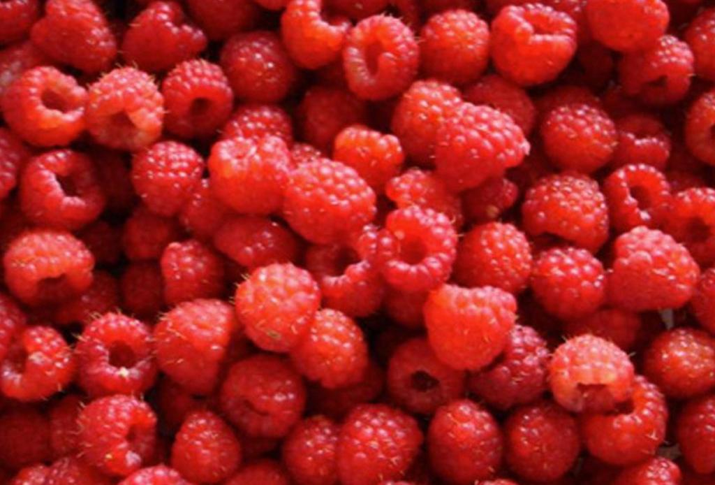 Si te gusta compartir comida con tu perrito, estas 10 frutas son ideales para hacerlo - frambuesa-1024x694