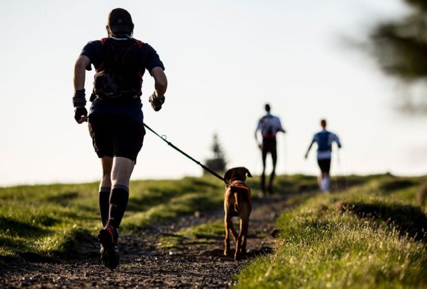 Tips para mantener a tu perro feliz en un departamento - correr-con-perro