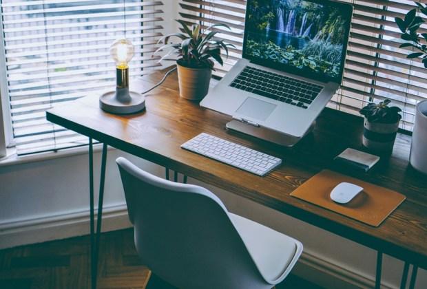 Cómo evitar distracciones y mejorar tu productividad en el trabajo - organizacion-escritorio-plantas